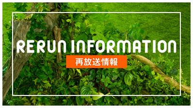 RERUN INFORMATION 再放送情報