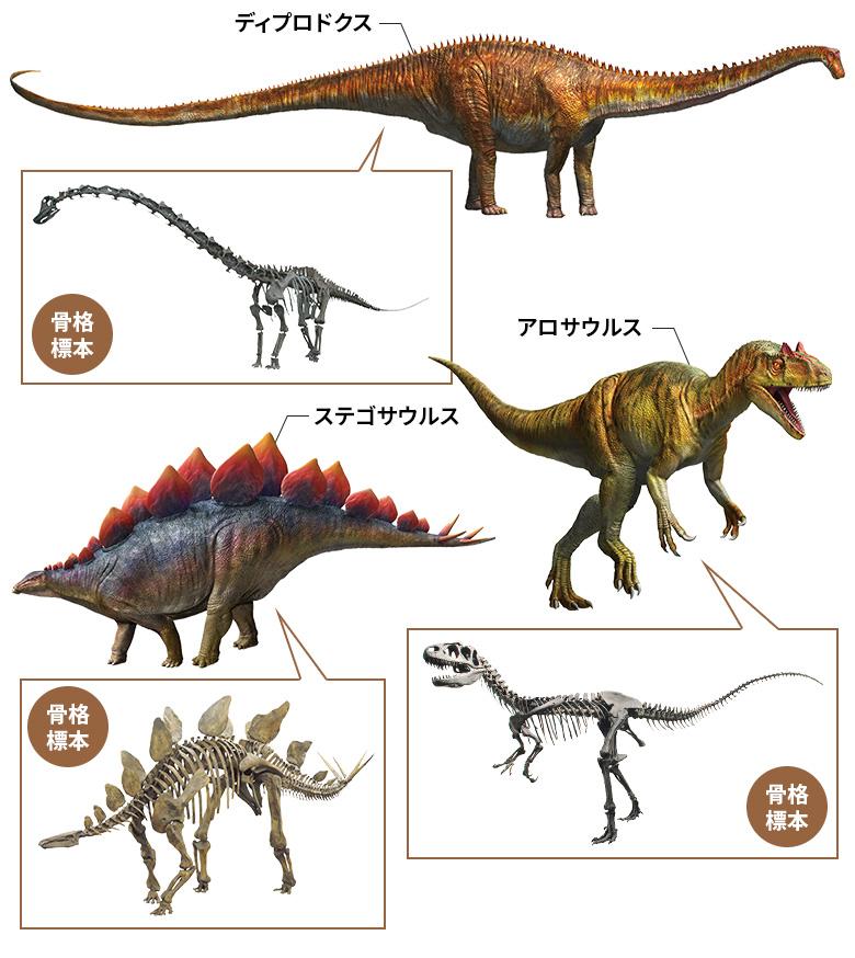 ディプロドクス・ステゴサウルス・アロサウルス