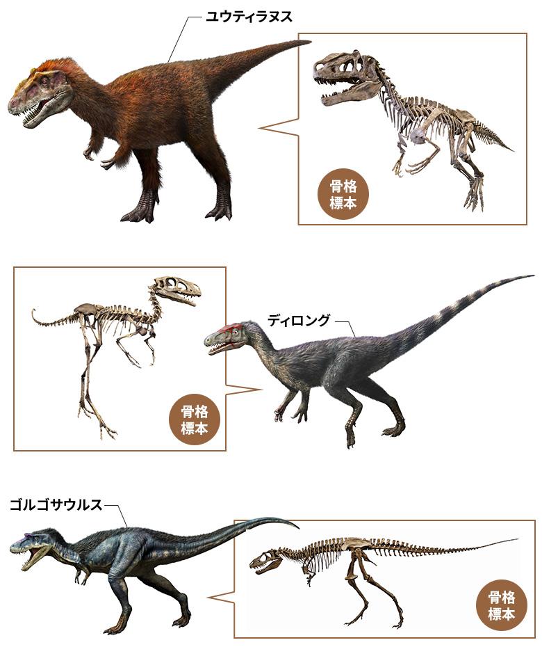 ディロング・ユウティラヌス・ゴルゴサウルス