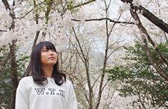 大野桜まつり