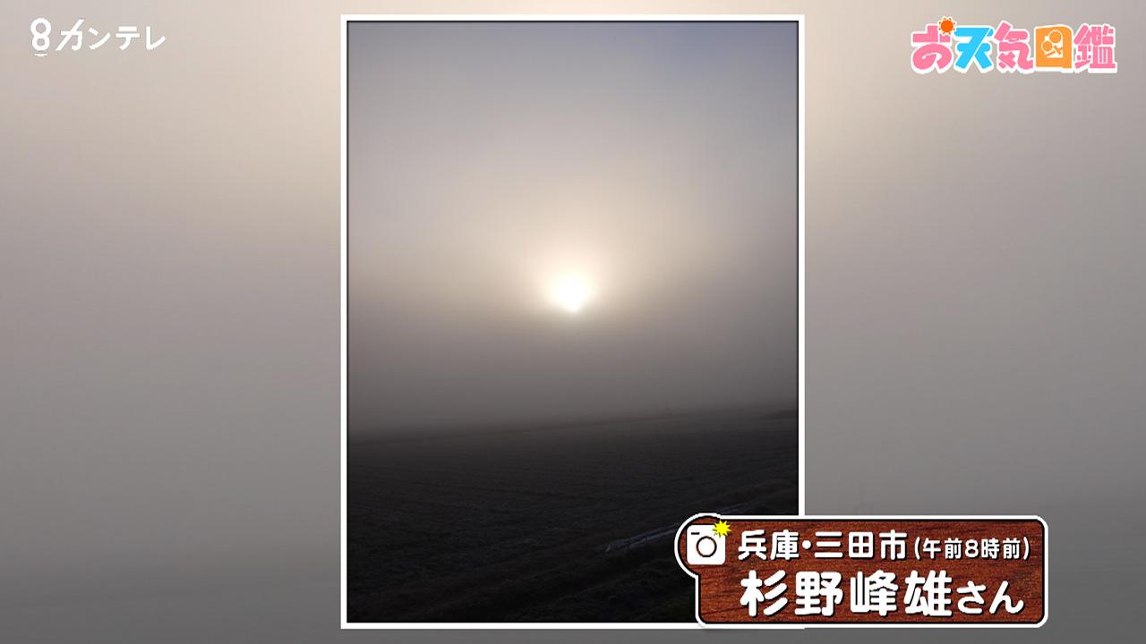 「まるで宇宙空間?幻想的な霧の風景」(三田市)
