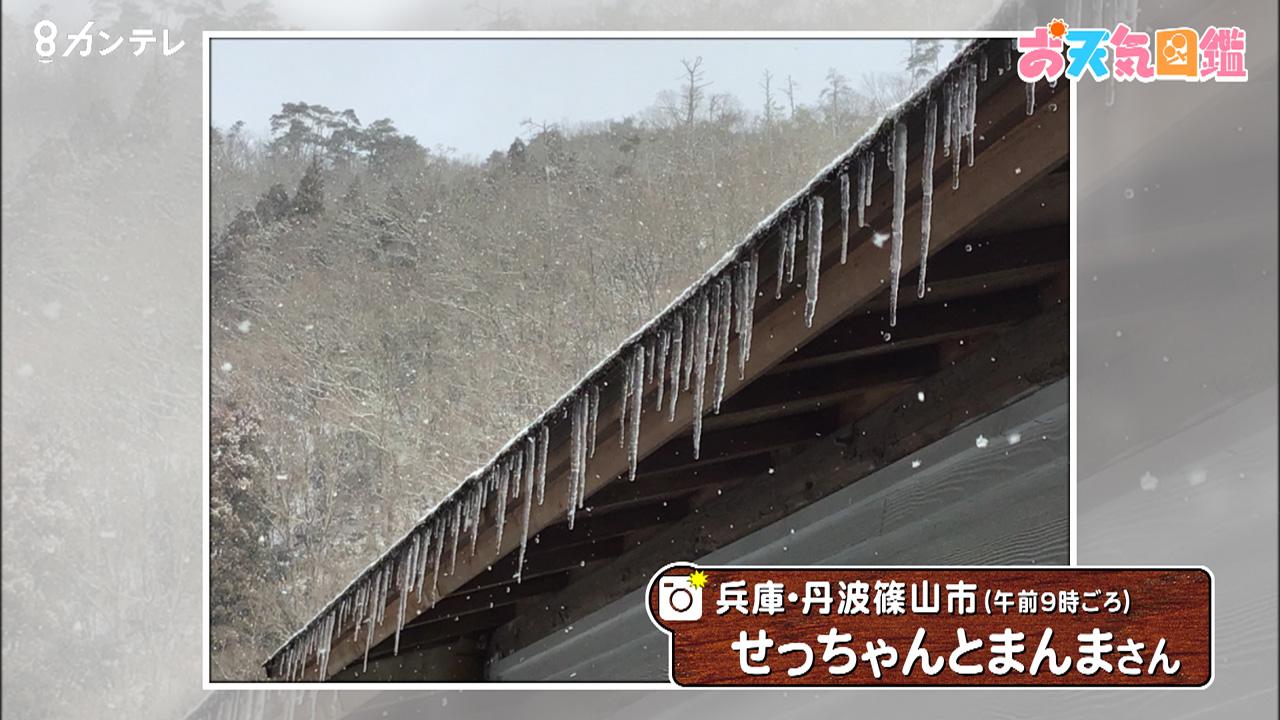 「つらら」(丹波篠山市)