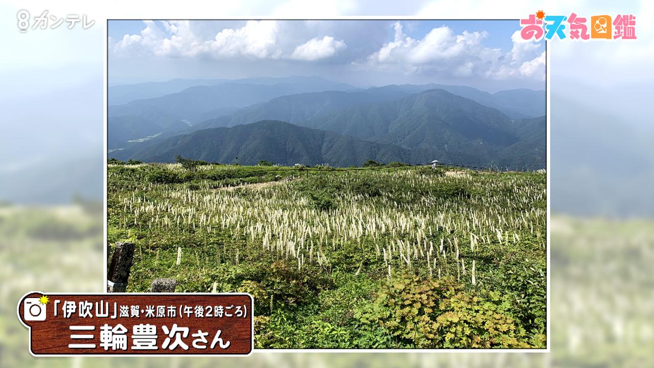 「涼しい絶景」(滋賀・伊吹山)