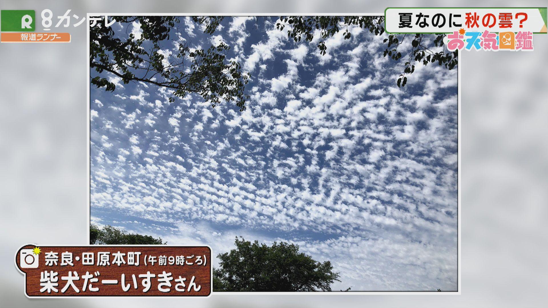 「初夏なのに秋の空?」(奈良・田原本町)