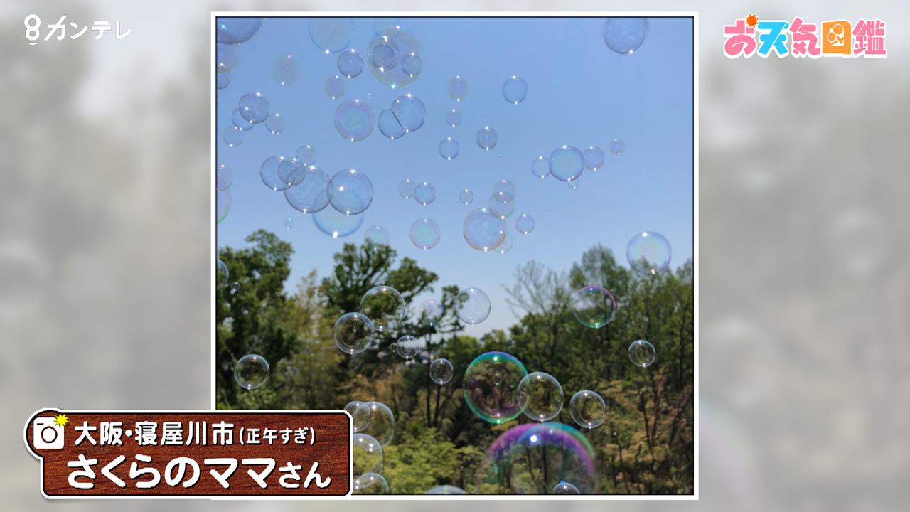 「青空に浮かぶシャボン玉」(大阪・寝屋川市)