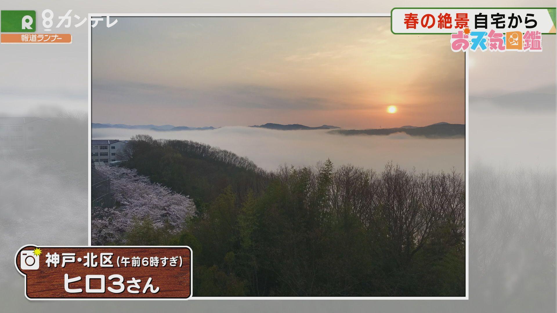 「春の絶景」(神戸市北区)