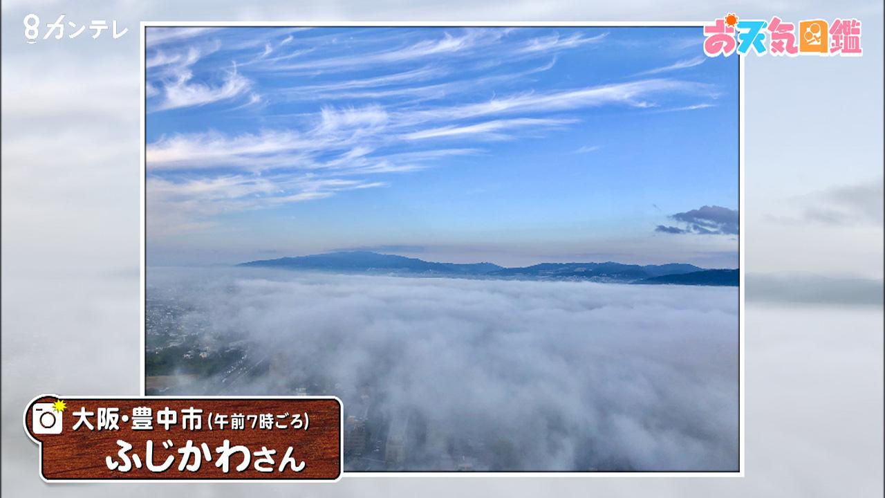 「高層マンションから雲海」
