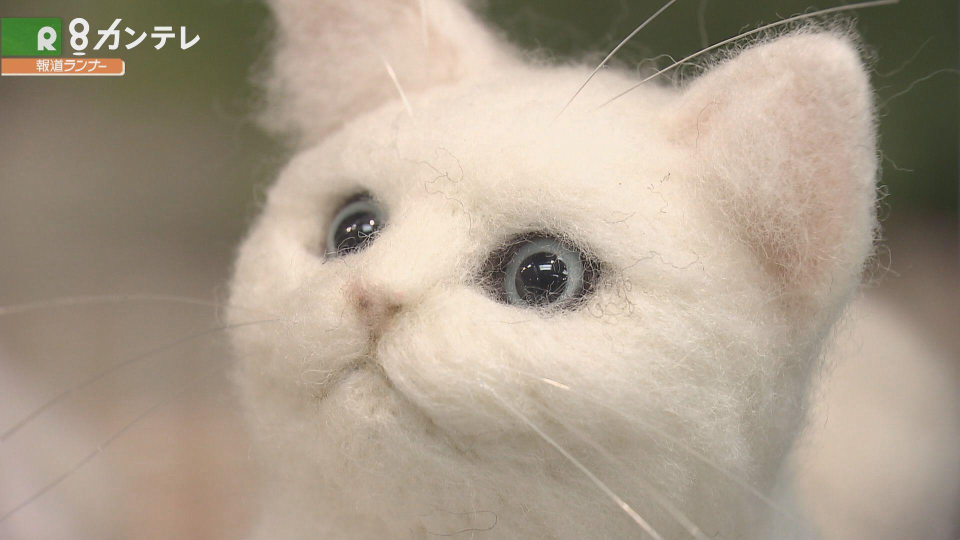 """リアルさに驚きも…「ペットロス症候群」の人を癒す、""""フェルトの猫"""""""