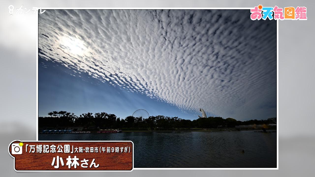 空を覆う「うろこ雲」(大阪・吹田市)