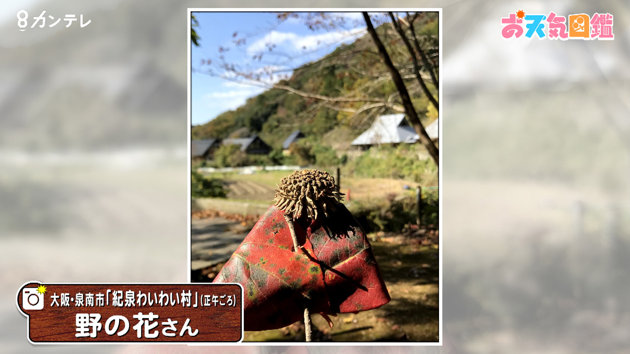 「里山の雰囲気にホッコリ」(大阪・泉南市)