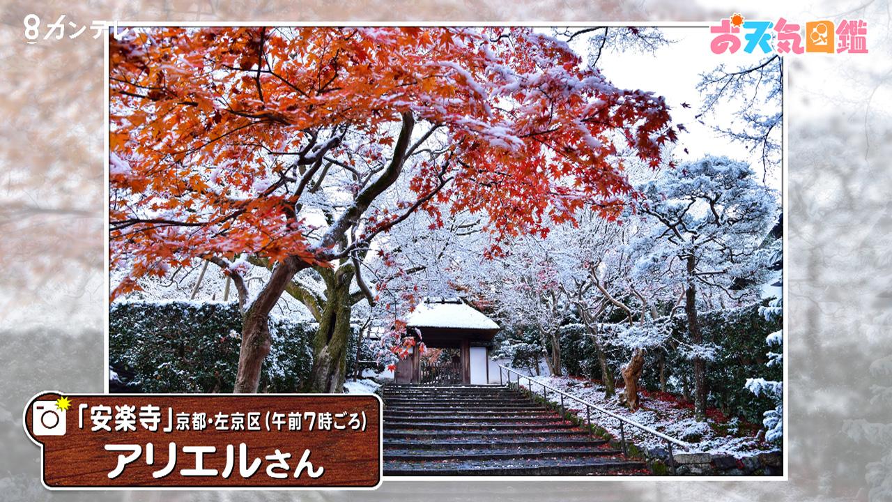 「紅葉と雪」(京都・左京区)