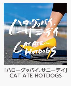 「ハローグッバイ、サニーデイ」(CAT ATE HOTDOGS)