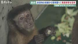京都市動物園 財政難でも広がる寄付の輪